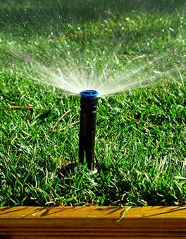 lawn sprinkler shooting water